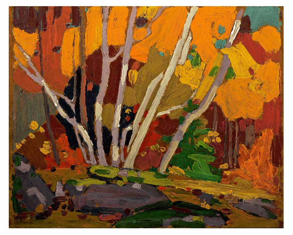 Autumn Birches, Fall 1916