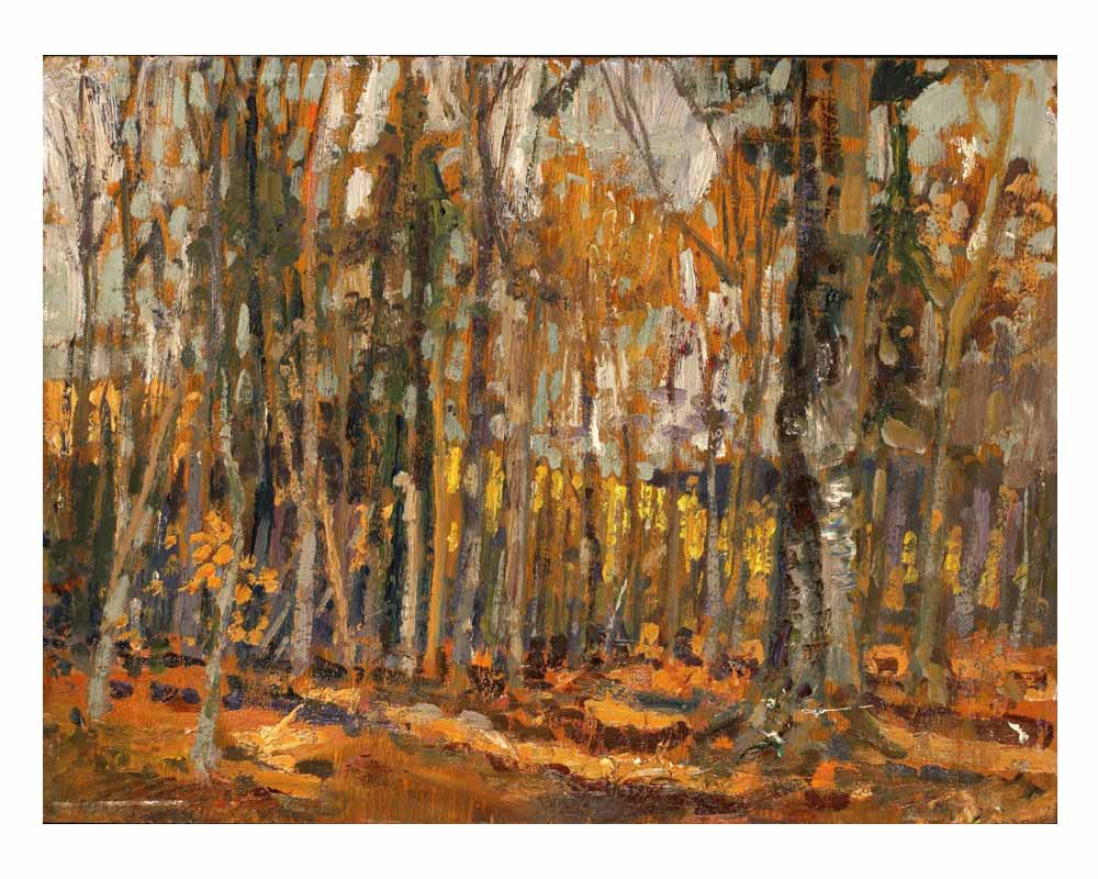 The Woods Interior, Algonquin Park, 1914