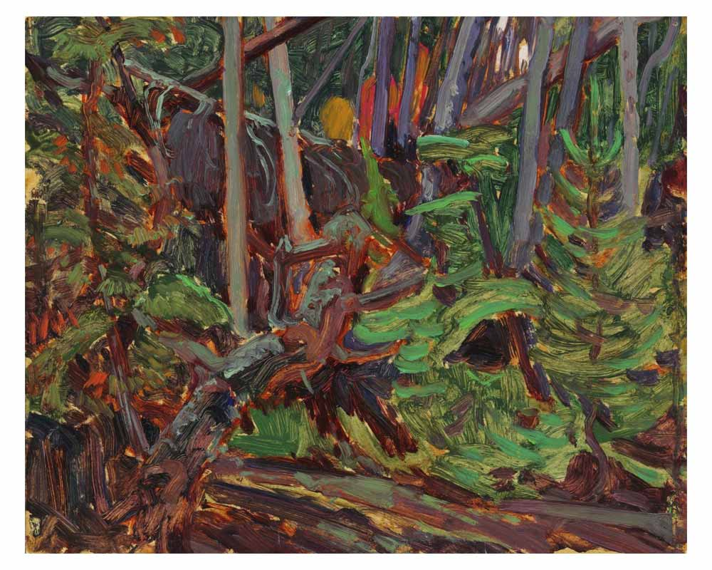 Tangled Bush, Algoma, 1919