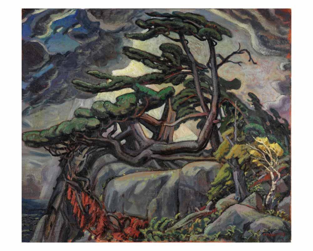 Pine Wrack, 1933