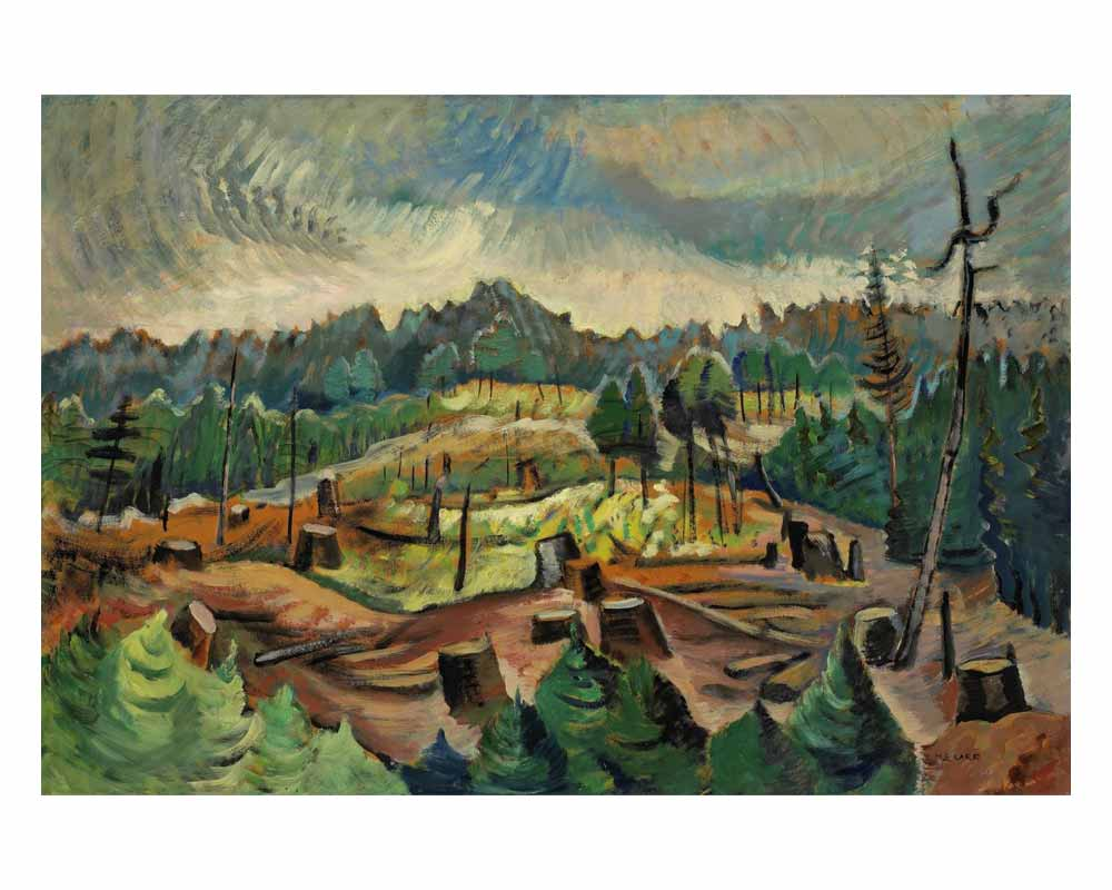 Logged-over Hillside, 1940