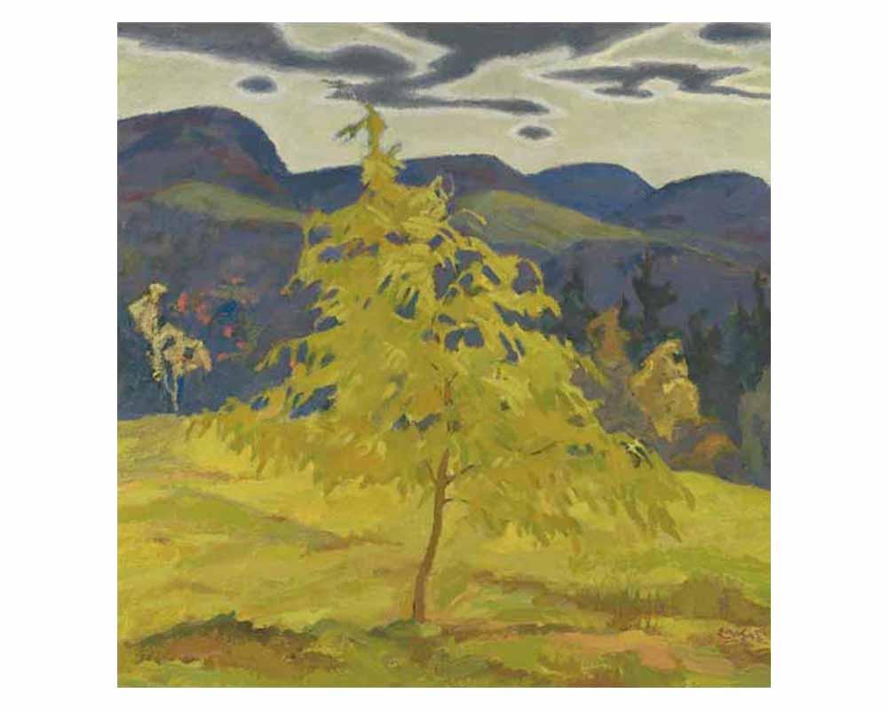 Frances' Tree, 1950