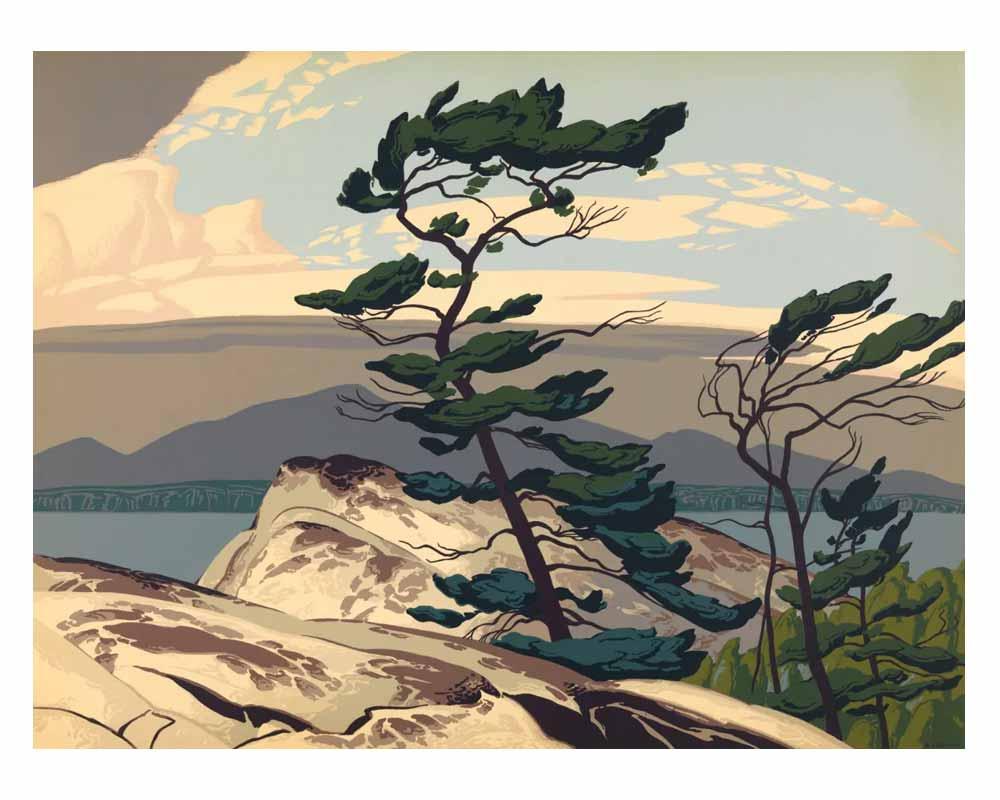 White Pine, 1957